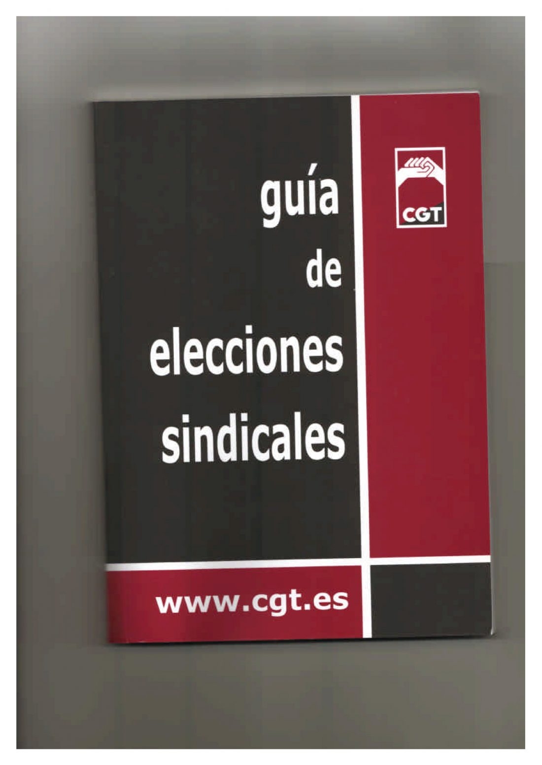 Guía de Elecciones Sindicales (Ed. 2005)