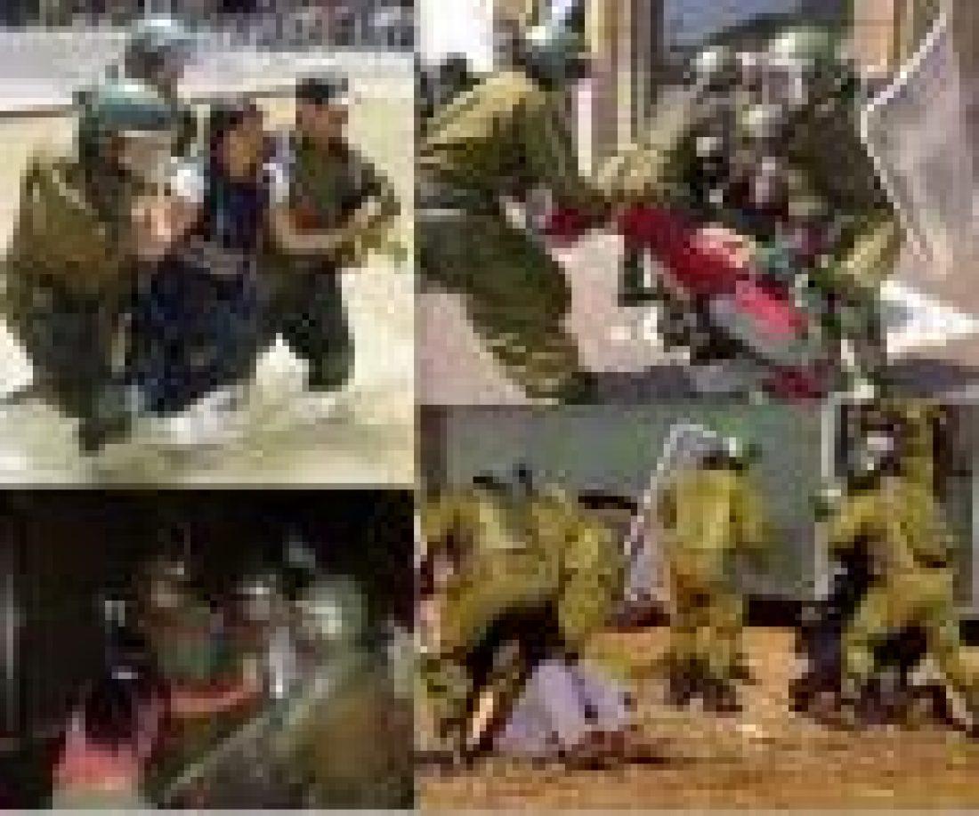 Llamado a desmilitarizar el territorio mapuche