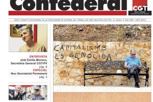 Notícia Confederal – junio 2013
