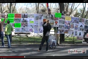 Vídeo: Manifestación en Madrid 23F. No a la Ley Mordaza