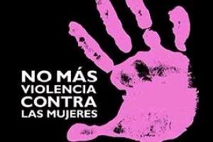 Violencia de Género, violencia de Estado, enero