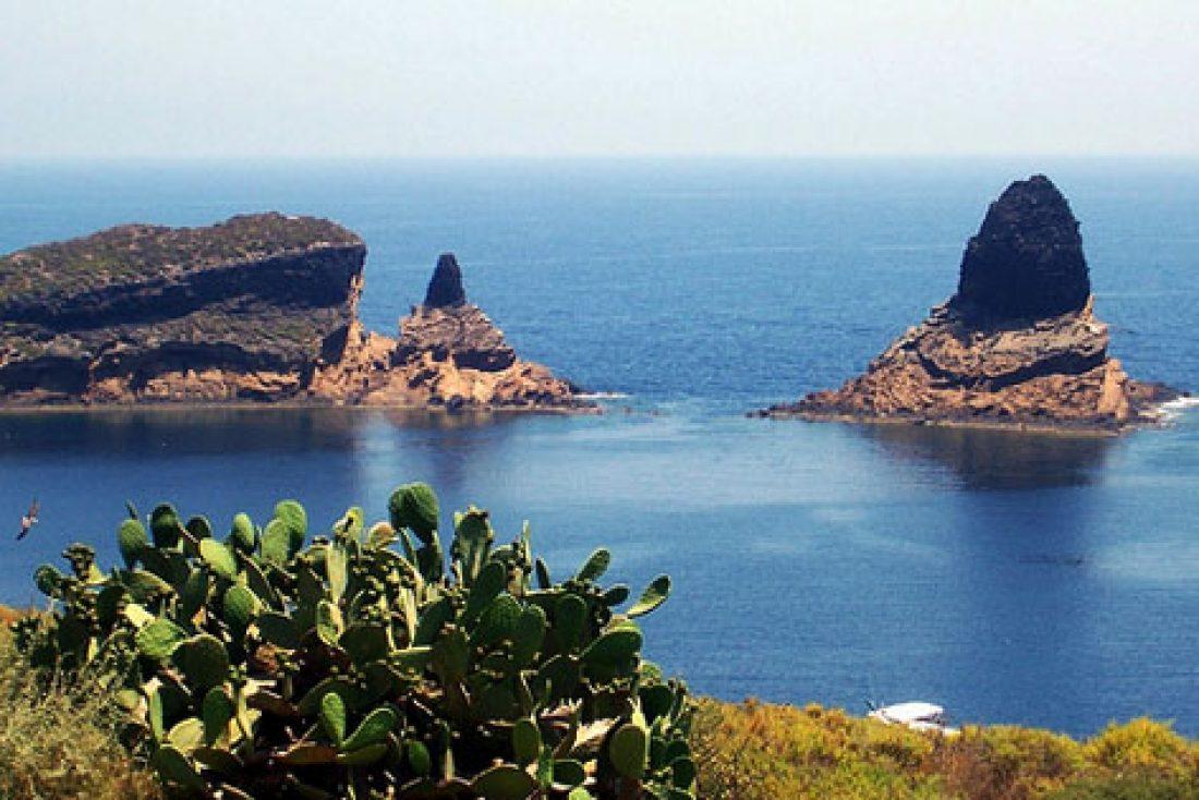 Despidos en la Reserva Marina de Cabo de Palos – Islas Hormigas