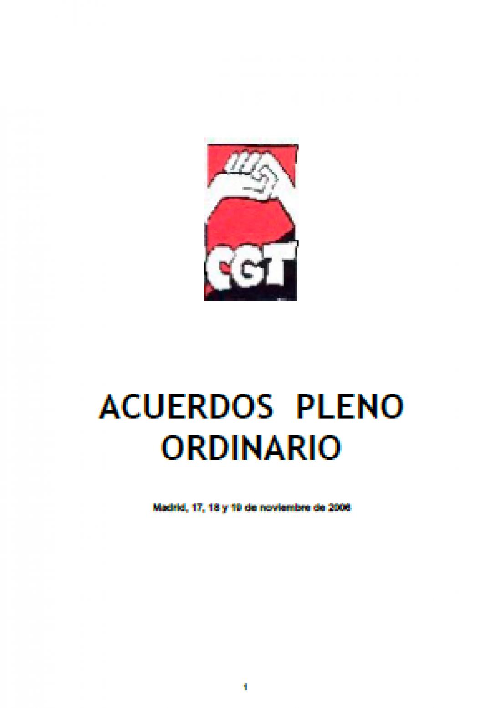 Pleno Confederal Ordinario y Extraordinario de Noviembre de 2006