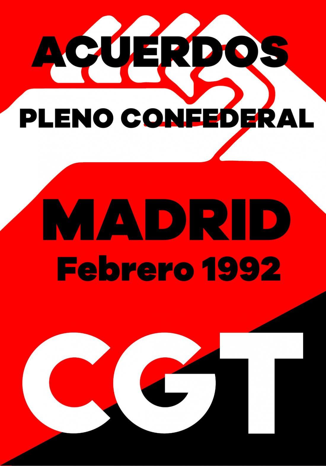 Pleno Confederal de Febrero de 1992