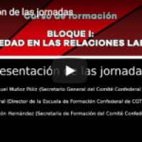 Vídeo: Jornadas sobre Precariedad en las Relaciones Laborales