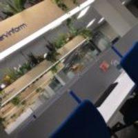 ING BANK colabora con ServinForm para atentar contra los derechos de su plantilla