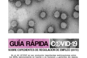 Guía Rápida Covid-19 ERTE